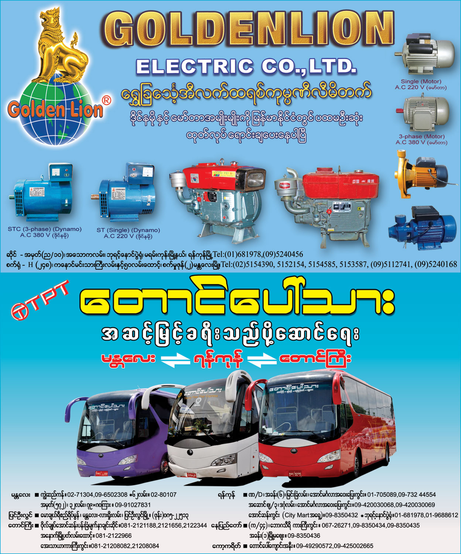 GOLDEN LIONElectrical Goods Sales