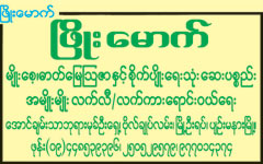 Phyo Mauk Agricultural Chemical Dealers