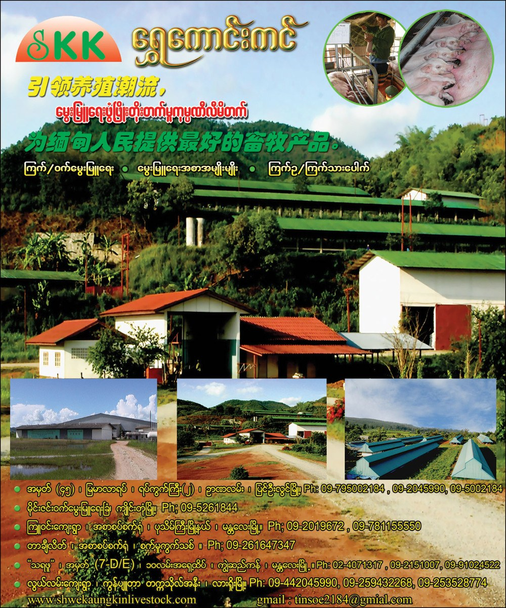 Shwe Kaung KinPoultry Feeds
